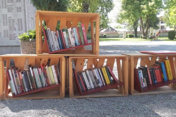 Utrip poletja v Knjižnici pod krošnjami